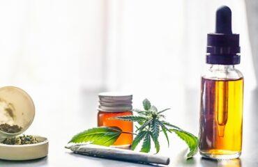 maconha medicinal e cogumelos mágicos