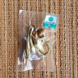 Cogumelos mágicos desidratados in natura - Psilocybe Cubensis
